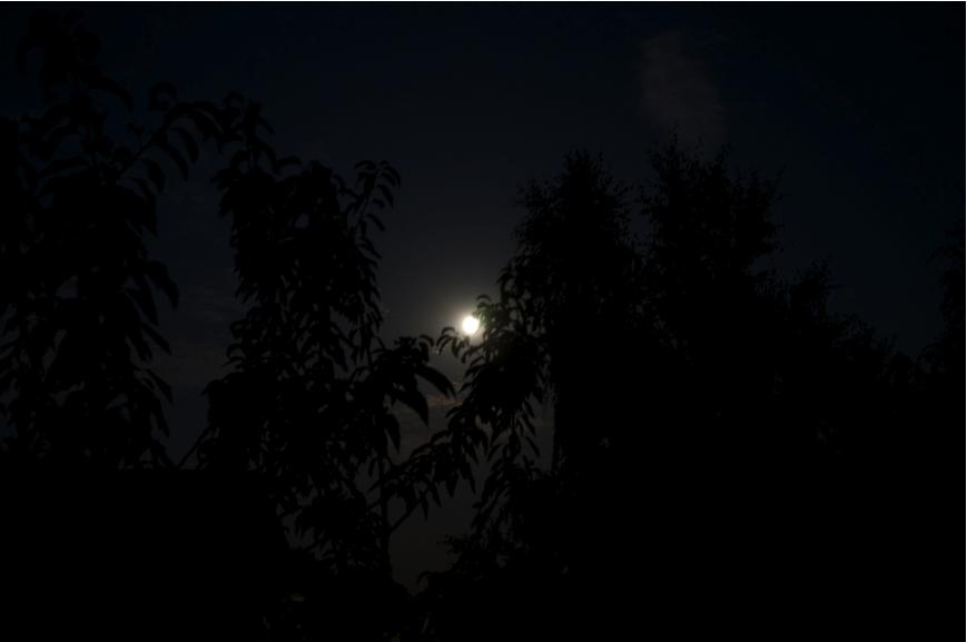 Nacht5